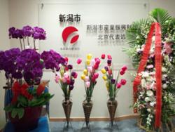 移転のお祝いに、関係企業様より美しいお花をいただきました