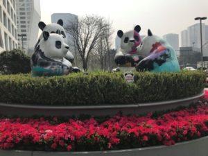 パンダ繁殖研究基地があることで有名な成都。町にはパンダが溢れています。
