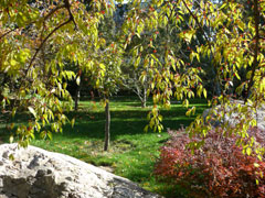 翠石園内の風景