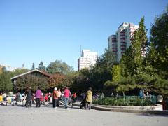 青空のもと多くの人たちが訪れていました