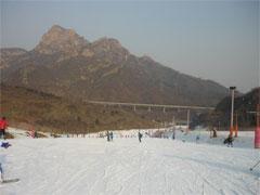 <周りに雪がなく,新感覚のスキー体験>