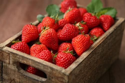 新潟特产-越后姬草莓